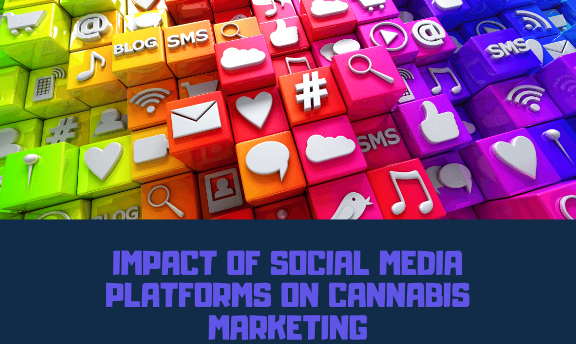 Social Media Platforms on Cannabis Marketing
